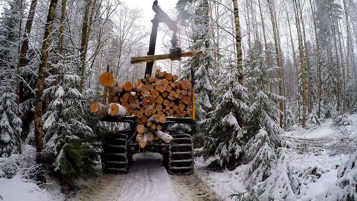 Компания использует свой Русский лес для строительства деревянных домов